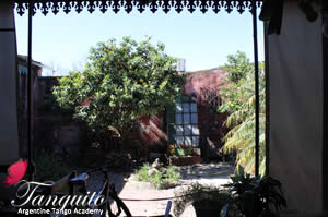 We had a wonderful day in la pampa at the pretty village of San Antonio de Areco.